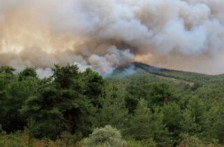 Αλεξανδρούπολη: Πυρκαγιά στην περιοχή Αγίων Θεοδώρων – Μεγάλη κινητοποίηση της Πυροσεβστικής – Χωρίς ρεύμα Κίρκη, Συκορράχη