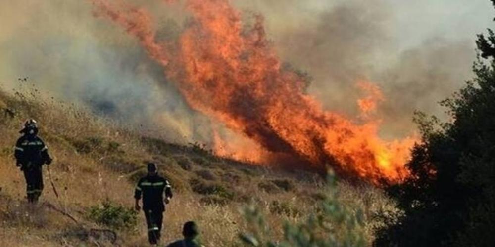 """Έβρος: Επικίνδυνη πυρκαγιά στη θέση """"Τρεις Βρύσες"""" μεταξύ Αλεξανδρούπολης-Σουφλίου – Επιχειρούν ελικόπτερο και πυροσβέστες"""