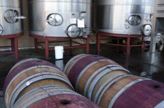 Νέα υποβολή αιτήσεων του μέτρου της απόσταξης κρασιού σε περίπτωση κρίσης