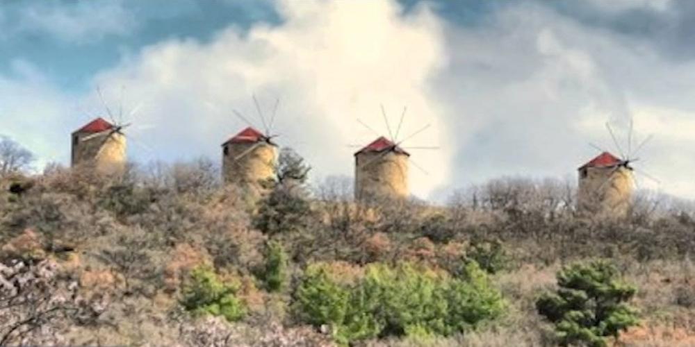 Έβρος: Πυρκαγιά ΤΩΡΑ στην Μελία Φερών – Συναγερμός στην Πυροσβεστική