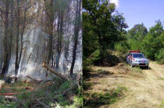 Τέθηκε υπό πλήρη έλεγχο απ' την Πυροσβεστική η πυρκαγιά μεταξύ Μελίας και Κοίλων