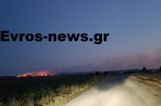 Ορεστιάδα: Μεγάλη πυρκαγιά στα Ρίζια, σε δασική περιοχή – Επιτόπου η Πυροσβεστική