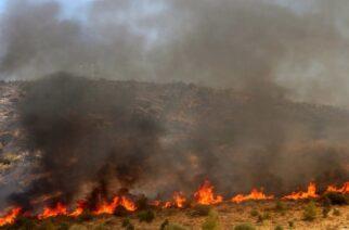 Αλεξανδρούπολη: Πυρκαγιά με αρκετά μέτωπα στην περιοχή της Τραϊανούπολης