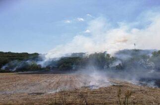 Βίντεο από την πυρκαγιά στον Λαγό Διδυμοτείχου