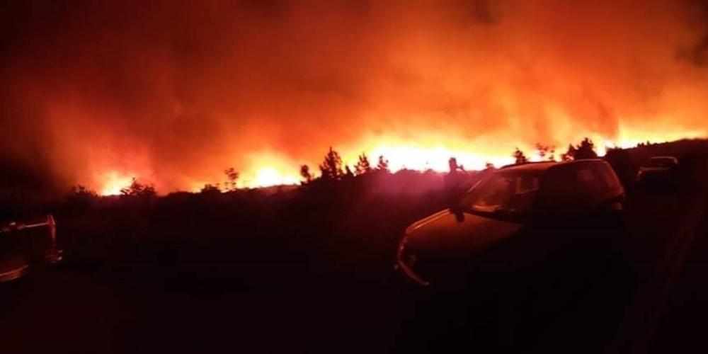 """ΒΙΝΤΕΟ: """"Μάχη"""" με τις φλόγες για να μην πλησιάσουν στο χωριό Νίψα"""
