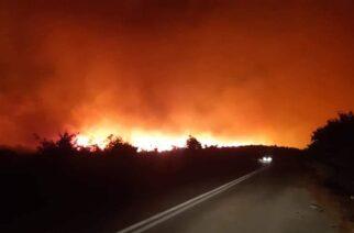 Έβρος: Σοβαρά ερωτηματικά και υποψίες απ' τις 11 φωτιές τις τελευταίες 10 ημέρες