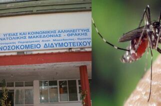 Κρούσμα ιού Δυτικού Νείλου σε άνδρα από χωριό του Διδυμοτείχου
