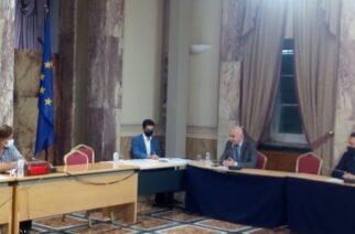 Μέτιος: Παρουσίασε το σχέδιο της Περιφέρειας ΑΜ-Θ στην Διακομματική Επιτροπή για την Θράκη