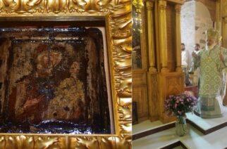 Την θαυματουργή εικόνα της Παναγίας της Παλιουριώτισσας, τίμησε σήμερα ο Μητροπολίτης Διδυμοτείχου κ.Δαμασκηνός
