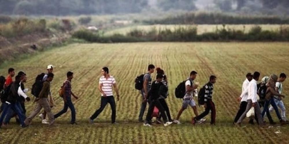 Διδυμότειχο: Αναστάτωση το πρωί στο χωριό Ελληνοχώρι, από διέλευση δεκάδων λαθρομεταναστών