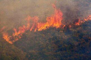 Συμβαίνει ΤΩΡΑ: Φωτιά στη Ρούσσα, στα ορεινά του Σουφλίου – Επιτόπου η Πυροσβεστική