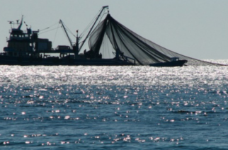 Θετικό κρούσμα κορονοϊού σε εργάτη αλιευτικού στην Αλεξανδρούπολη – Σε προληπτική καραντίνα άλλοι 5 ψαράδες