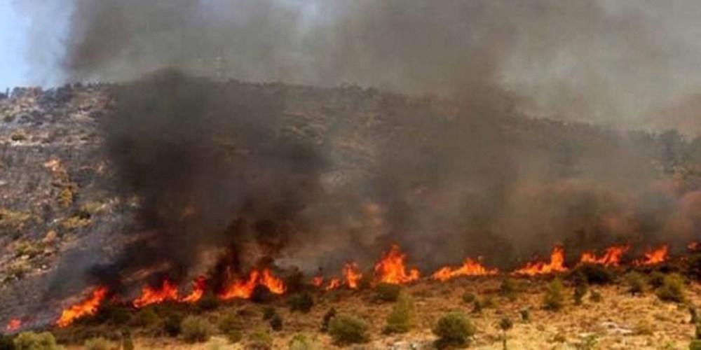 Διδυμότειχο: Πυρκαγιά ΤΩΡΑ στο δάσος του χωριού Λαγός
