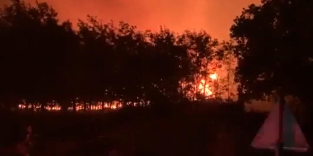Αεροπλάνα και ελικόπτερα κάνουν συνεχείς ρίψεις απ'το πρωί – Στο… τσακ γλίτωσε η Νίψα (ΒΙΝΤΕΟ)