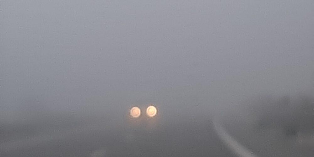 Τοπίο στην ομίχλη σε σημεία του κάθετου άξονα μεταξύ Διδυμοτείχου-Σουφλίου(ΒΙΝΤΕΟ)