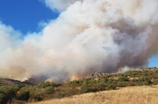 """Εξαιρετικά δύσκολη η κατάσταση στην πυρκαγιά της Λευκίμμης – """"Μάχη"""" με τις φλόγες γύρω απ' το χωριό (ΒΙΝΤΕΟ)"""