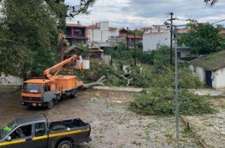 Αλεξανδρούπολη: Έλεγχος κτιρίων στην περιοχή Μάκρης, που επλήγησαν απ' την χαλαζόπτωση πέρσι τον Ιούλιο