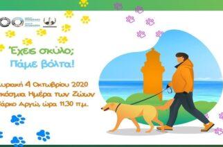 Δήμος Αλεξανδρούπολης: Έχεις σκύλο; Πάμε βόλτα!