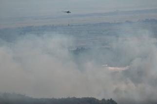 Οριοθετήθηκε ευτυχώς η καταστροφική πυρκαγιά στο προστατευόμενο δάσος Λευκίμμης-Δαδιάς. Έκαψε 3.000 στρέμματα (ΒΙΝΤΕΟ)