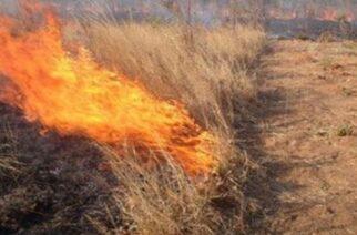 ΤΩΡΑ: Πυρκαγιά δίπλα στο χωριό Γεμιστή Φερών – Επιτόπου Πυροσβεστικές δυνάμεις