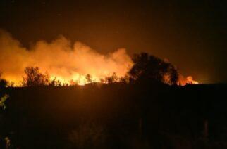 Νέα φωτιά στην Καβησό Φερών μέσα στη νύχτα – Άμεση επέμβαση της Πυροσβεστικής