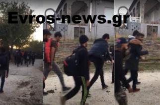 Σημερινό ΒΙΝΤΕΟ: Ορδές νεαρών λαθρομεταναστών… παρελαύνουν μέσα στο χωριό Μεσημέρι Σουφλίου!!!