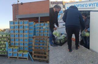 Αλεξανδρούπολη: Τρόφιμα και προϊόντα πρώτης ανάγκης σε 4.060 οικογένειες απ' το ΤΕΒΑ, μοίρασε το Πολυκοινωνικό