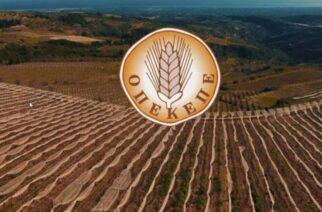 ΟΠΕΚΕΠΕ: Μπαράζ πληρωμών από την Παρασκευή στους αγρότες – Όλες οι λεπτομέρειες
