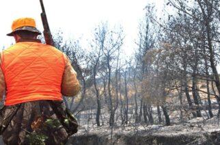Αλεξανδρούπολη: Απαγόρευση κυνηγιού για 5 χρόνια. στις περιοχές που κάηκαν σε Λουτρά, Αγνάντια, Μοναστηράκι