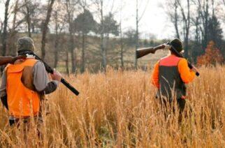 Επιτρέπονται πλέον κυνήγι και ψάρεμα – ΦΕΚ αναθεωρεί τα περιοριστικά μέτρα έως 7 Ιανουαρίου