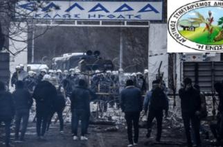 """Αγροτικός Συνεταιρισμός Ορεστιάδας """"Η ΕΝΩΣΗ"""": Αποτρέψαμε την εισβολή τον Μάρτιο, μας τους φέρνετε στο Φυλάκιο;"""