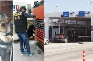 Αλεξανδρούπολη: Σύλληψη Σκοπιανού φορτηγατζή στους Κήπους – Ο αστυνομικός σκύλος… μύρισε τα κρυμμένα ναρκωτικά στους πυροσβεστήρες