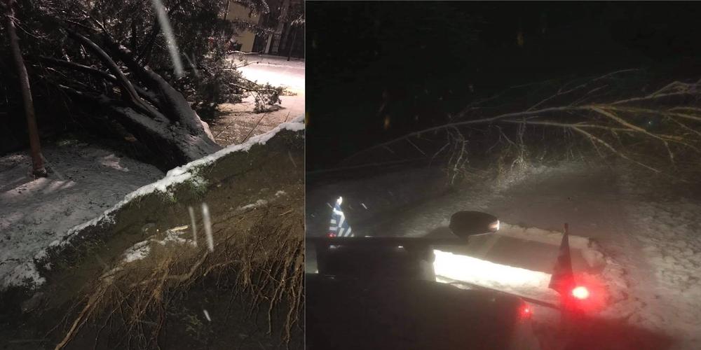 Έβρος: Ανοιχτό εθνικό και επαρχιακό οδικό δίκτυο – Πολλές πτώσεις δέντρων και καλωδίων της ΔΕΗ