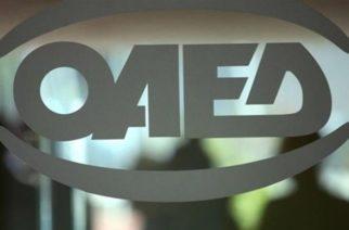 Λογιστές Αλεξανδρούπολης: Ζητούν στελέχωση με προσωπικό και καλύτερη επικοινωνία με τον τοπικό ΟΑΕΔ