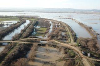 Δήμος Αλεξανδρούπολης: Που θα υποβάλλετε τα δικαιολογητικά, για καταγραφή ζημιών αγροτικών επιχειρήσεων απ' τις πλημμύρες