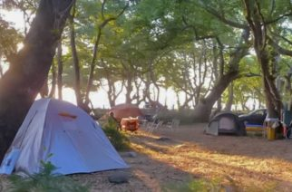 Σαμοθράκη: Οι τιμές που αποφάσισε ο δήμος, για το Κάμπινγκ Φυσικής Διαβίωσης Πλατιάς