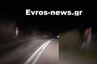 ΒΙΝΤΕΟ πριν λίγο: Λαθρομετανάστες περπατούν πάνω στον επαρχιακό δρόμο Διδυμοτείχου-Μεταξάδων