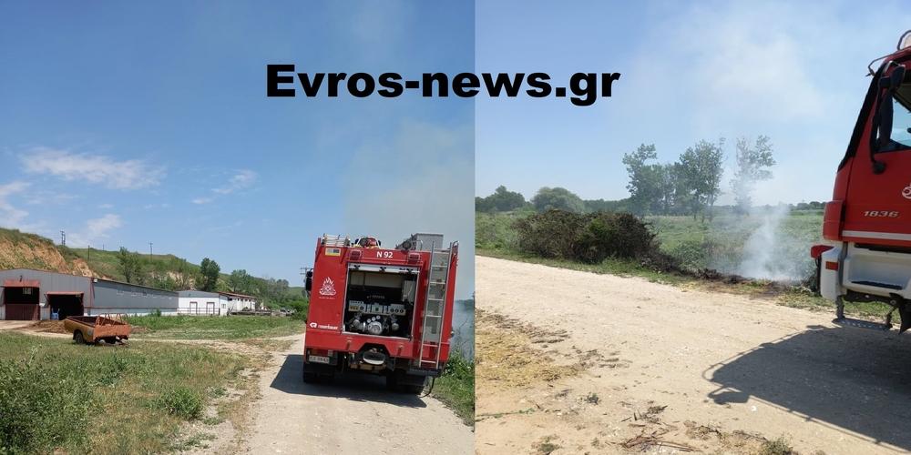 Ορεστιάδα: Πυρκαγιά απείλησε κτηνοτροφική μονάδα στη Νέα Βύσσα – Επιτόπου η Πυροσβεστική