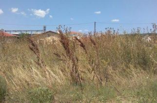 Δήμος Αλεξανδρούπολης σε πολίτες: Καθαρίστε οικόπεδα και λοιπούς ακάλυπτους χώρους γι' αποφυγή πυρκαγιών