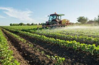 Α.Σ.Δ.Ορεστιάδας 'Η ΕΝΩΣΗ: Ξεκίνησε η υποβολή δηλώσεων Ενιαίας Ενίσχυσης 2021 για τους αγρότες