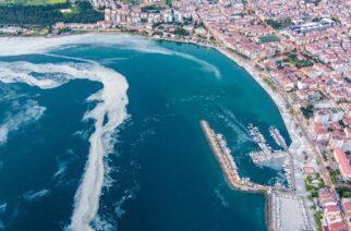 Κίνδυνος η περίεργη «γλίτσα» που απειλεί τη θάλασσα του Μαρμαρά, να φτάσει και στο Θρακικό πέλαγος