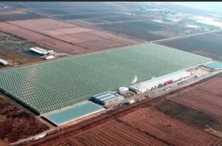 Θερμοκήπια Θράκης: Ετοιμάζουν γεωθερμική μονάδα ισχύος 36,7 MW – Στην Αλεξανδρούπολη 10 χρόνια μόνο… πανηγυρίζουμε