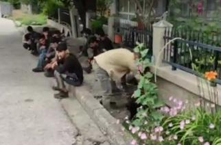 Λιάζονται και δροσίζονται: Καλώς τα παιδιά στο Ορμένιο – Ήρθαν να… λύσουν την υπογεννητικότητα (ΒΙΝΤΕΟ)