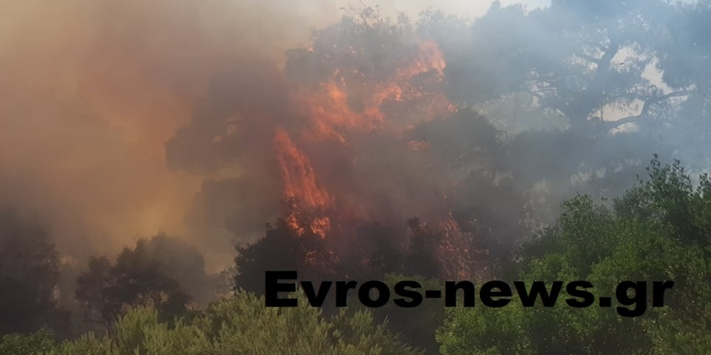 """ΤΩΡΑ: Εκκενώνεται (προληπτικά) η Λευκίμμη Σουφλίου, αφού η φωτιά κατευθύνεται στο χωριό – Έρχεται το ρωσικό """"θηρίο"""" Μπέριεφ"""