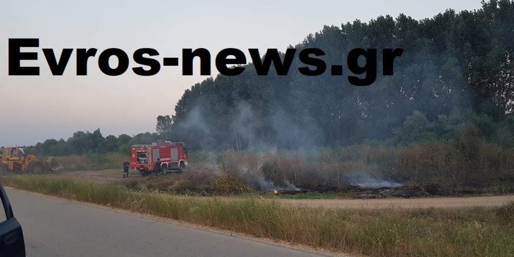 Ορεστιάδα: Πυρκαγιά ξέσπασε κοντά στο χωριό Φυλάκιο – Επέμβαση κατοίκων και Πυροσβεστικής