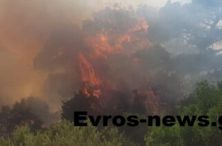 Απαγόρευση κυκλοφορίας αύριο σε δασικές εκτάσεις Αλεξανδρούπολης και Σουφλίου – Πολύ υψηλός κίνδυνος πυρκαγιάς