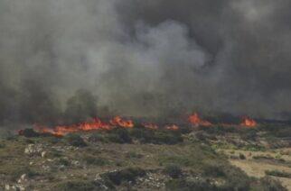 Σουφλί ΤΩΡΑ: Πυρκαγιά ξέσπασε στην περιοχή Κοτρωνιά – Επιτόπου και το Πυροσβεστικό ελικόπτερο