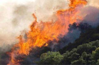 Διδυμότειχο: Φωτιά στη Βουλγαρία μεταξύ Μεταξάδων-Αλεποχωρίου, κοντά στα ελληνοβουλγαρικά σύνορα – Σε επιφυλακή η Πυροσβεστική