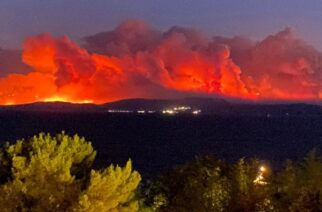 Τμήμα Δασολογίας Ορεστιάδας, για τις πρόσφατες Δασικές Πυρκαγιές: Θλιβερός απολογισμός, αισιοδοξία για την «επόμενη μέρα»