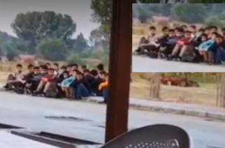 Ορεστιάδα: Πάνω από 30 λαθρομετανάστες περιφέρονταν χθες μέσα στο Ορμένιο (ΒΙΝΤΕΟ)